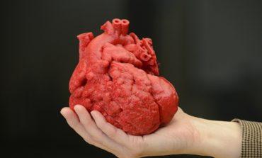 3D printer ilə insan ürəyi kopyalanıb
