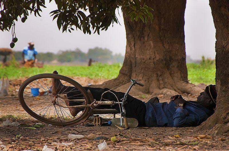 Siesta_Afrikada%20mango%20agaclarinin%20altinda[1]