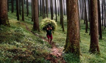 National Geographic'dən ilin 40 ən zəhmətkeş insanı