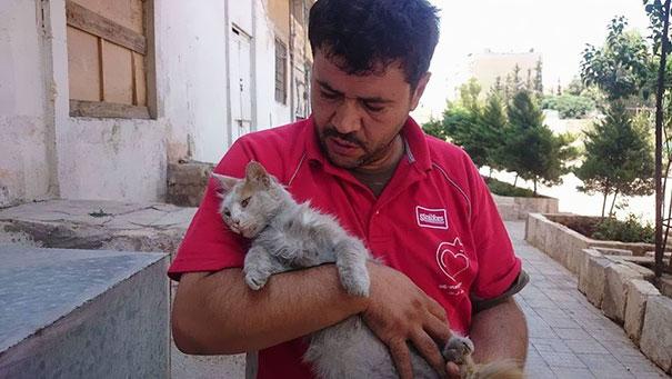 cat-man-aleppo-syria-2