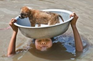 good-kids-acts-of-kindness-restore-faith-humanity-parenting-14