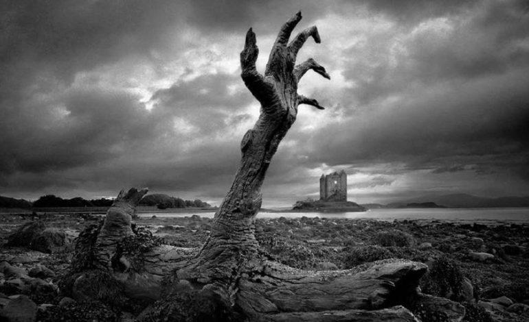 Elm adamlarının araşdırması: Zombi epidemiyası həqiqət ola bilərmi?