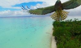 2016-ci ildə Drone'la çəkilmiş ən gözəl 20şəkil