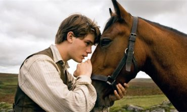 Atların qeyri-adi hərəkətlərinin səbəblərinədir?