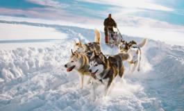 Laplandiyada qış | Yeni il nağılı