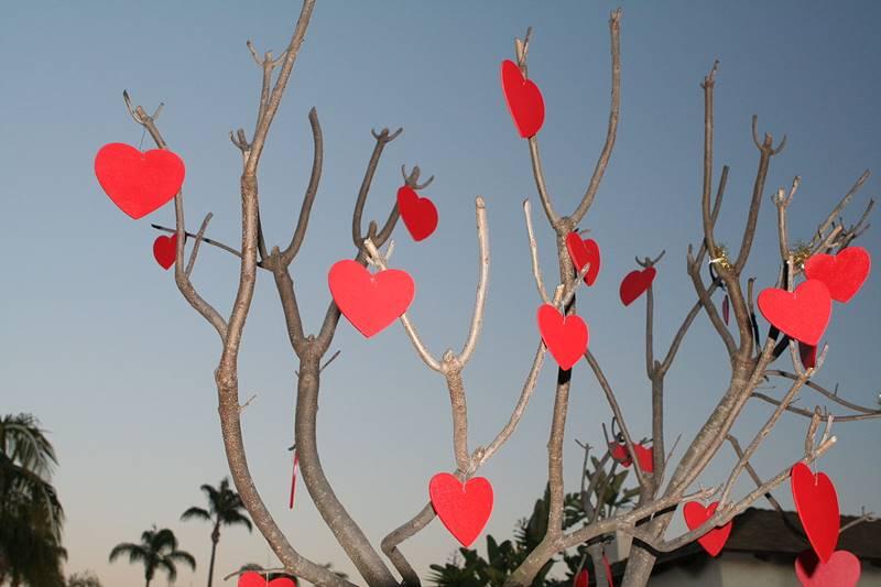 14 fevral - Sevgililər Günü