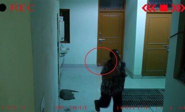 Ruh, gənc qızın arxasından itələyən yerdə kameraya düşüb | Video