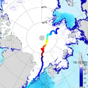 yaaz.az Polarstern Almaniya 2019