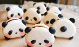 Şirin heyvanlar | Panda Macaron'ları