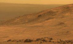 NASA mütəxəssisləri 'Mars şərtlərində' kartof yetişdirməyi bacardılar