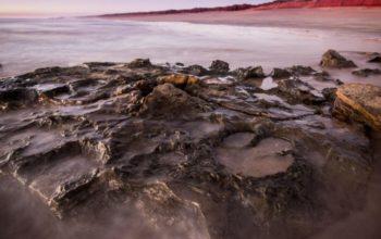 Avstraliyada dünyanın ən böyük dinozavr ayaq izi tapıldı