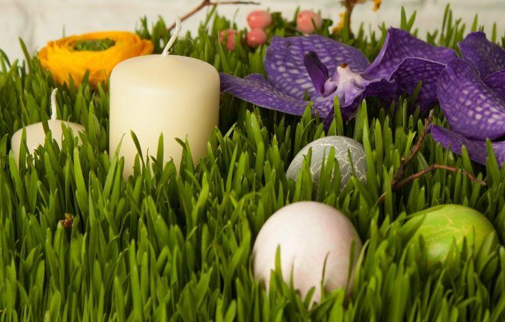 Novruz Bayramı şeirləri